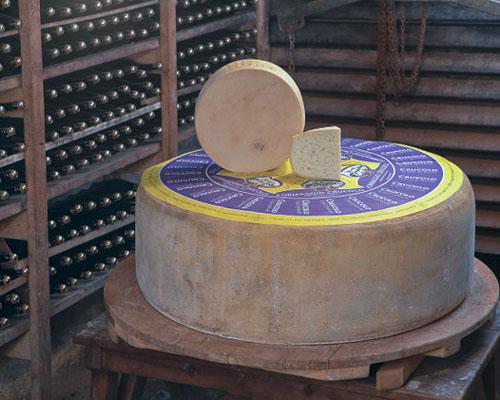 Planet Cheese - Crucolo.jpg