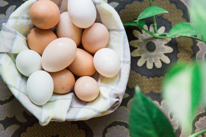 Park Lane Guest House, Austin eggs