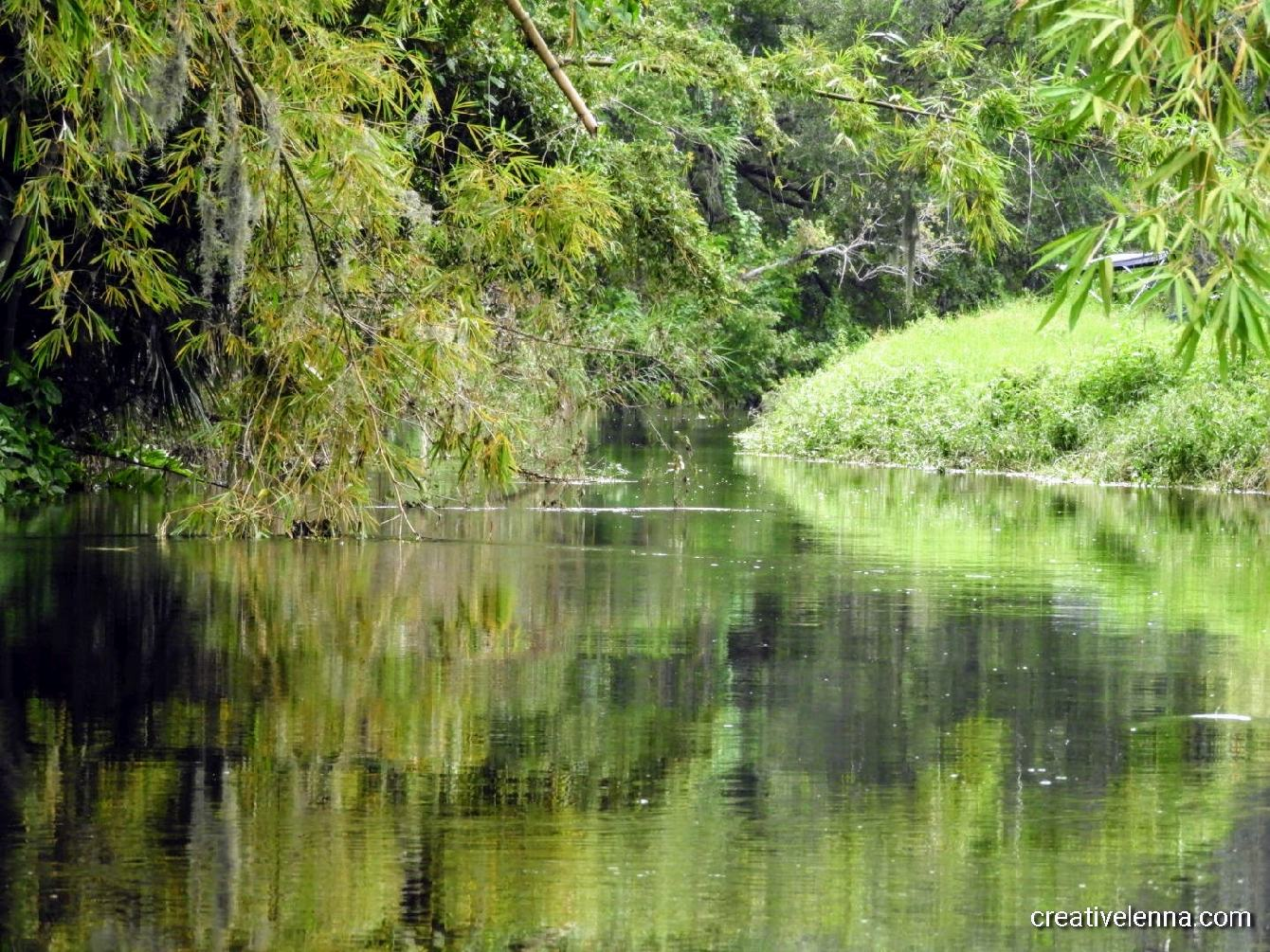 229: Photo of Gap Creek