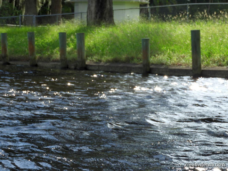 245: photo of the Braden River