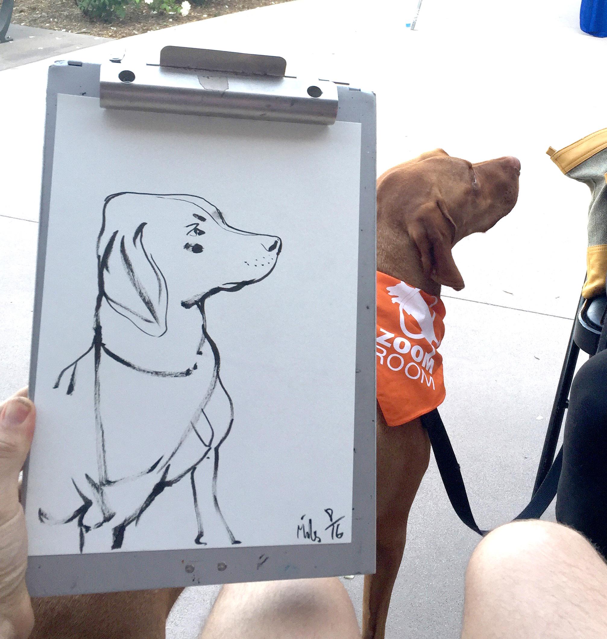 Dog Port 2.jpg