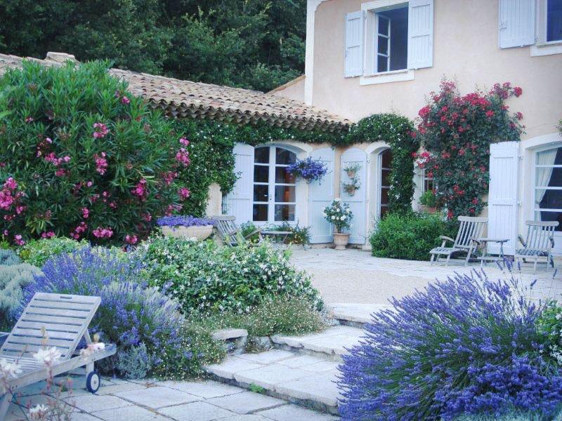 Blomster og planter Frankrig sommer 08 004_redigeret.jpg