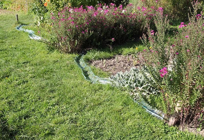 ESDMAA-DSAADp-FABRIQUES_DE_VERRE-Irrigation-04.jpg