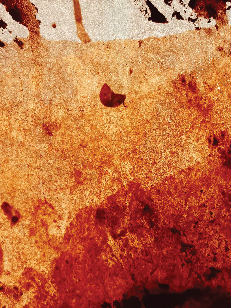ESDMAA-DSAADp-EN ARGILE-Luminaire pigment [terre]-Alexis Jacquot-03.jpg