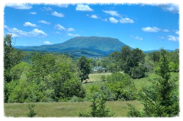 Lexington's Signature House Mountain