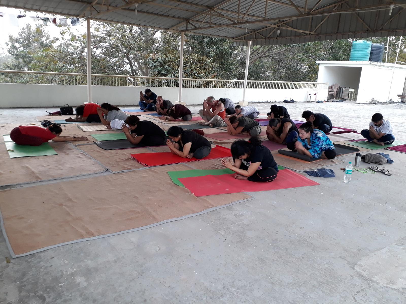 Mystic Yoga Retreat Bodh Gaya March 2018 -  (12).JPG