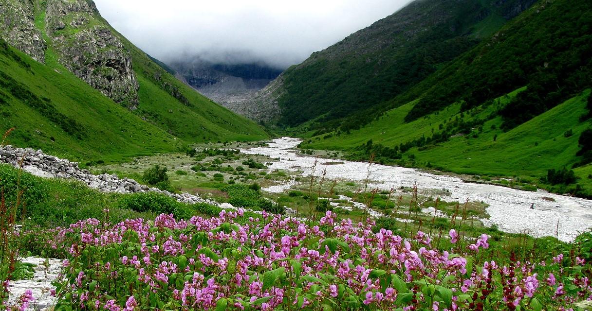 MYSTIC YOGA RETREAT - HEMKUND SAHEB AND VELLEY OF FLOWERS