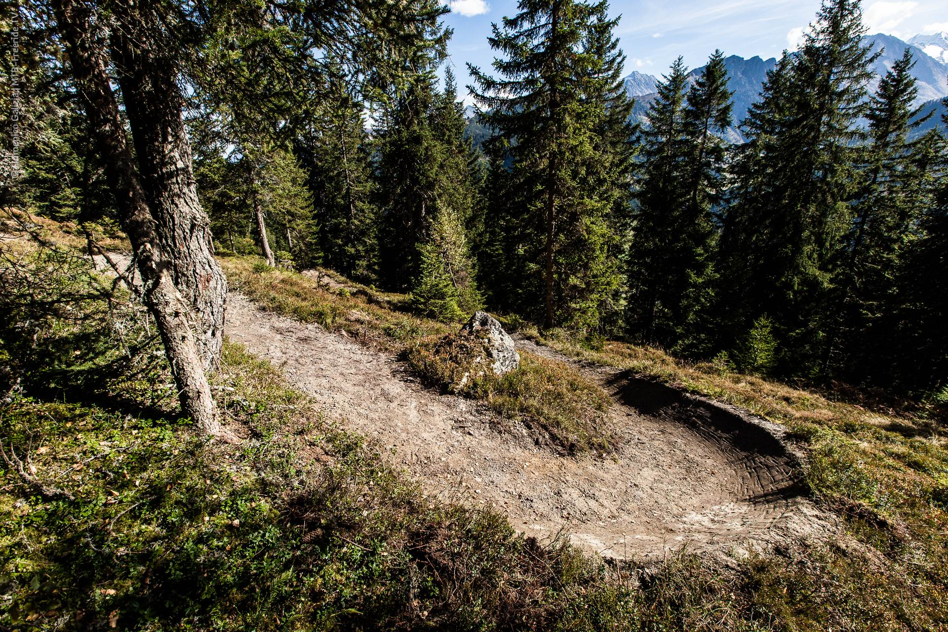 ridable_trailbuilding_Gerlos_2014-004.jpg