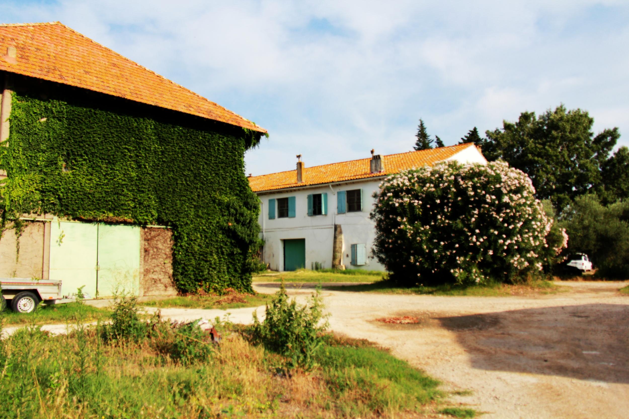 Chais Domaine de la Foret.jpg