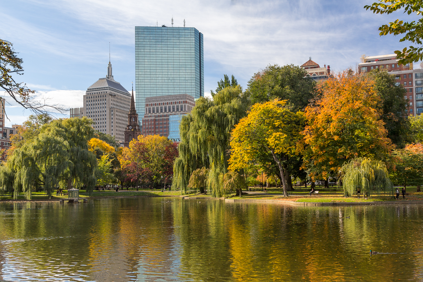 """Fall in the City, Boston Public Garden"", inkjet print,  22""H x 30""W"