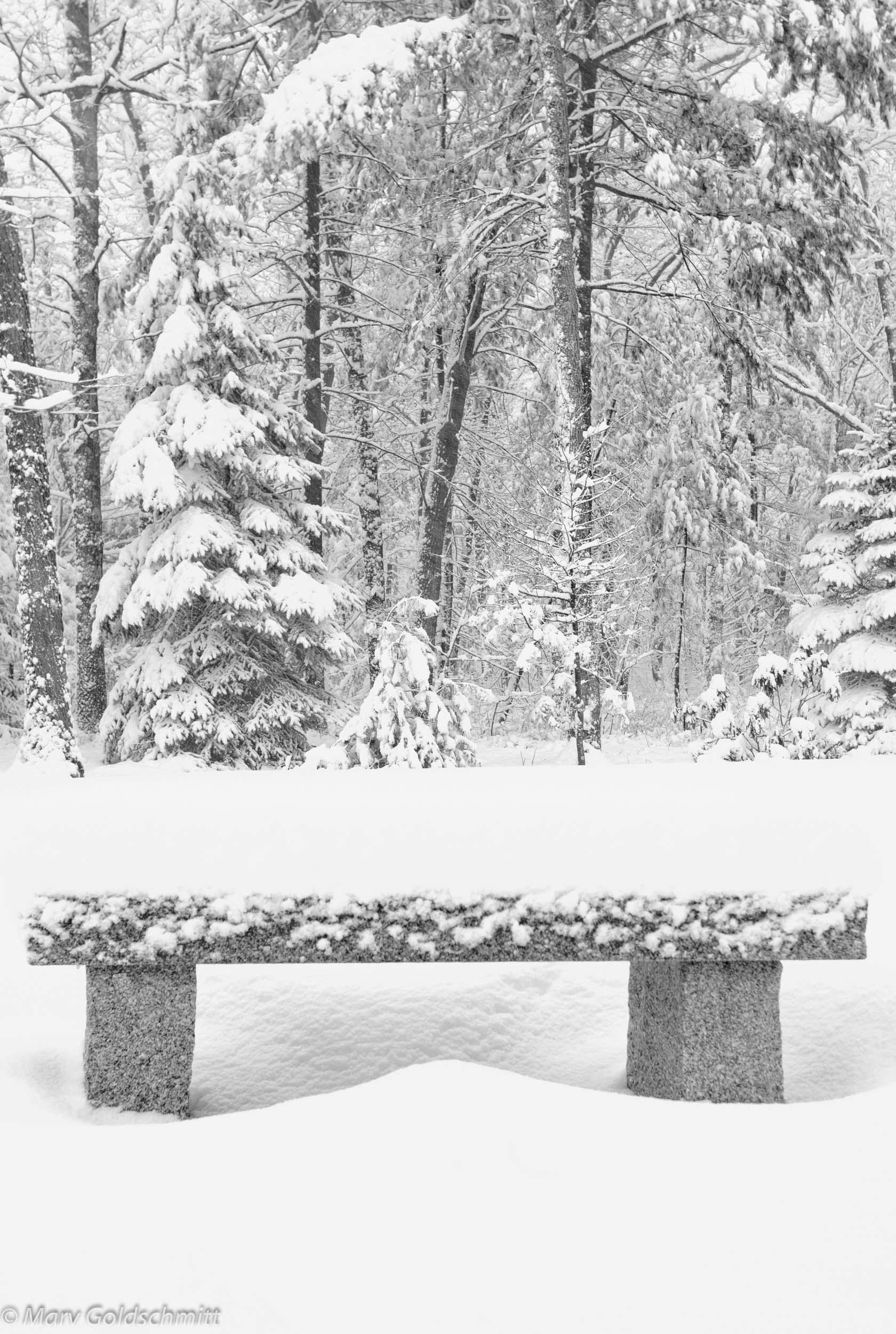 Zen Bench  (c) Marv Goldschmitt