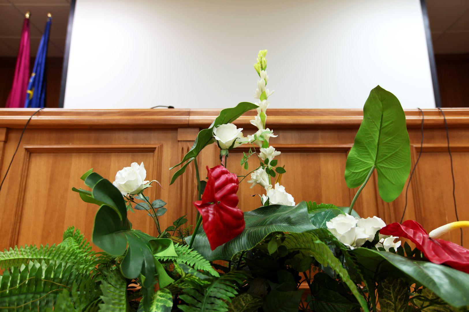 salon de actos flores_result.jpg