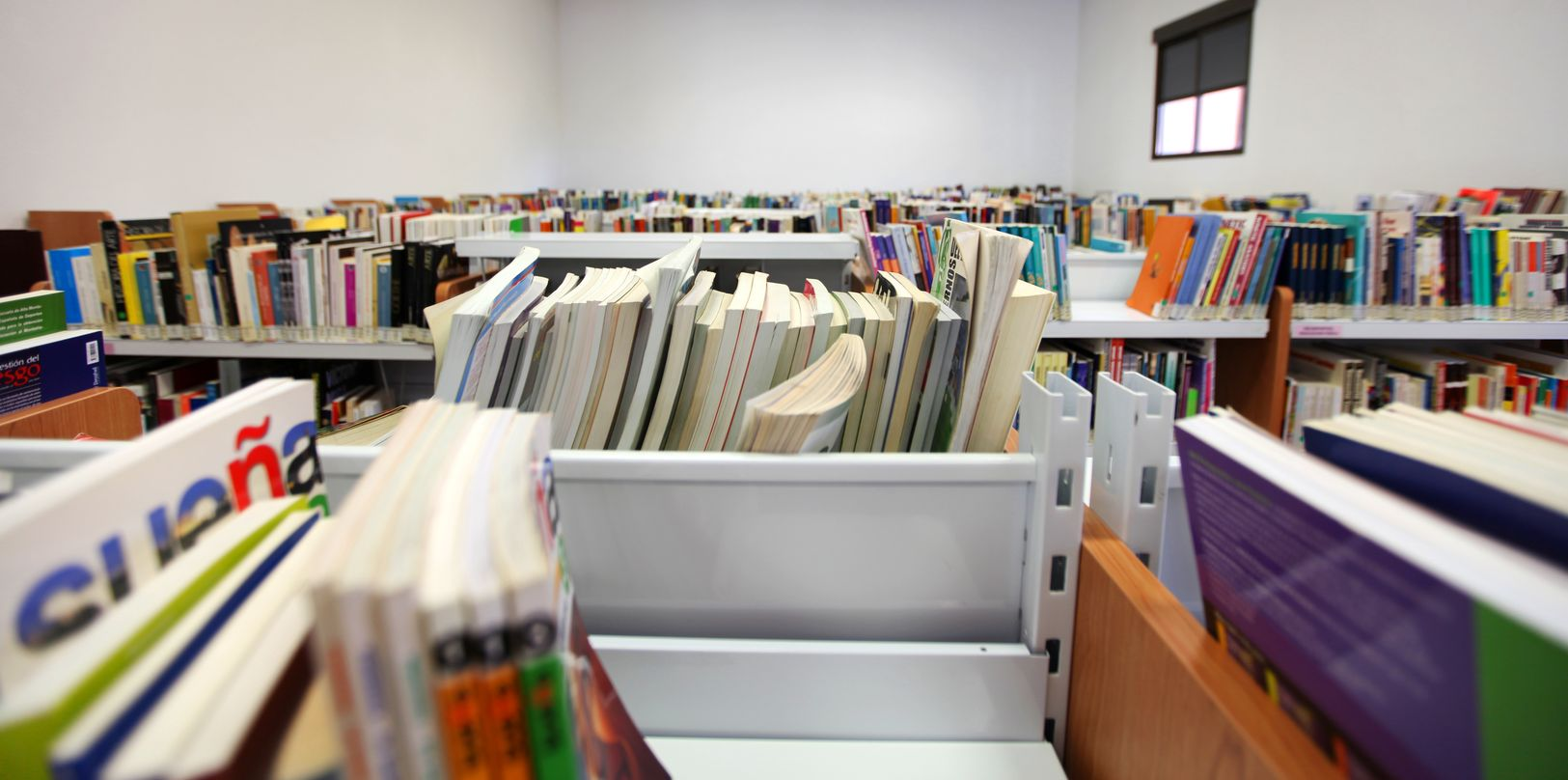 Libros Biblioteca_result.jpg