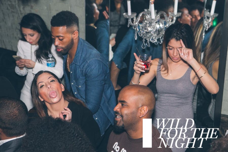 WILD FOR THE NIGHT | Saturday January 9th | Stori
