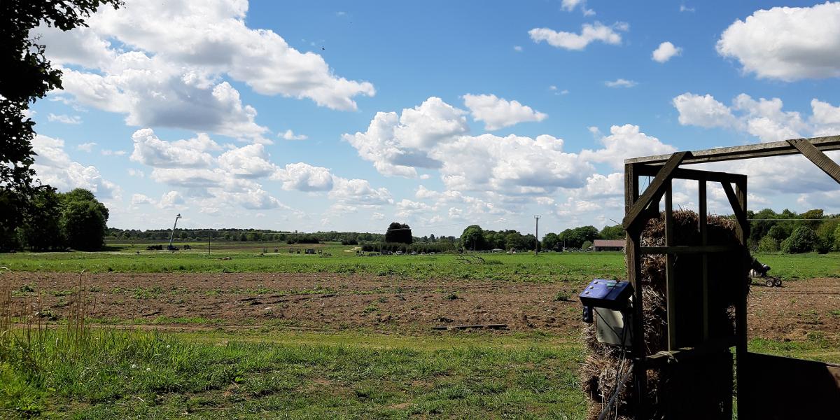 View across Chalk Farm Clay Ground - photo by Stella Gooch