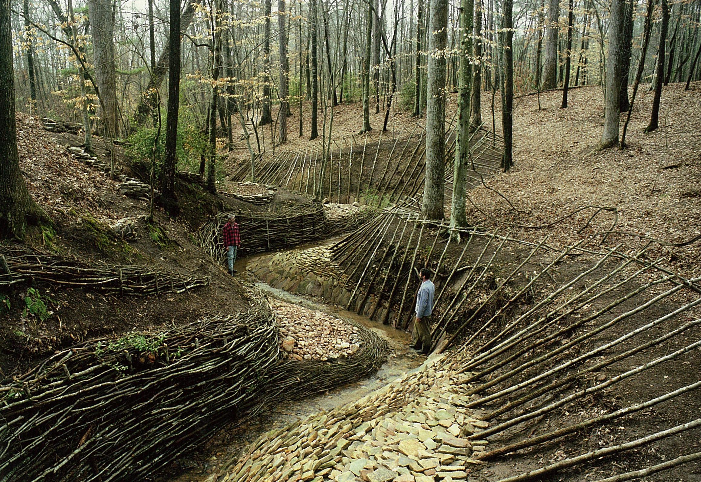 creek weave.jpg