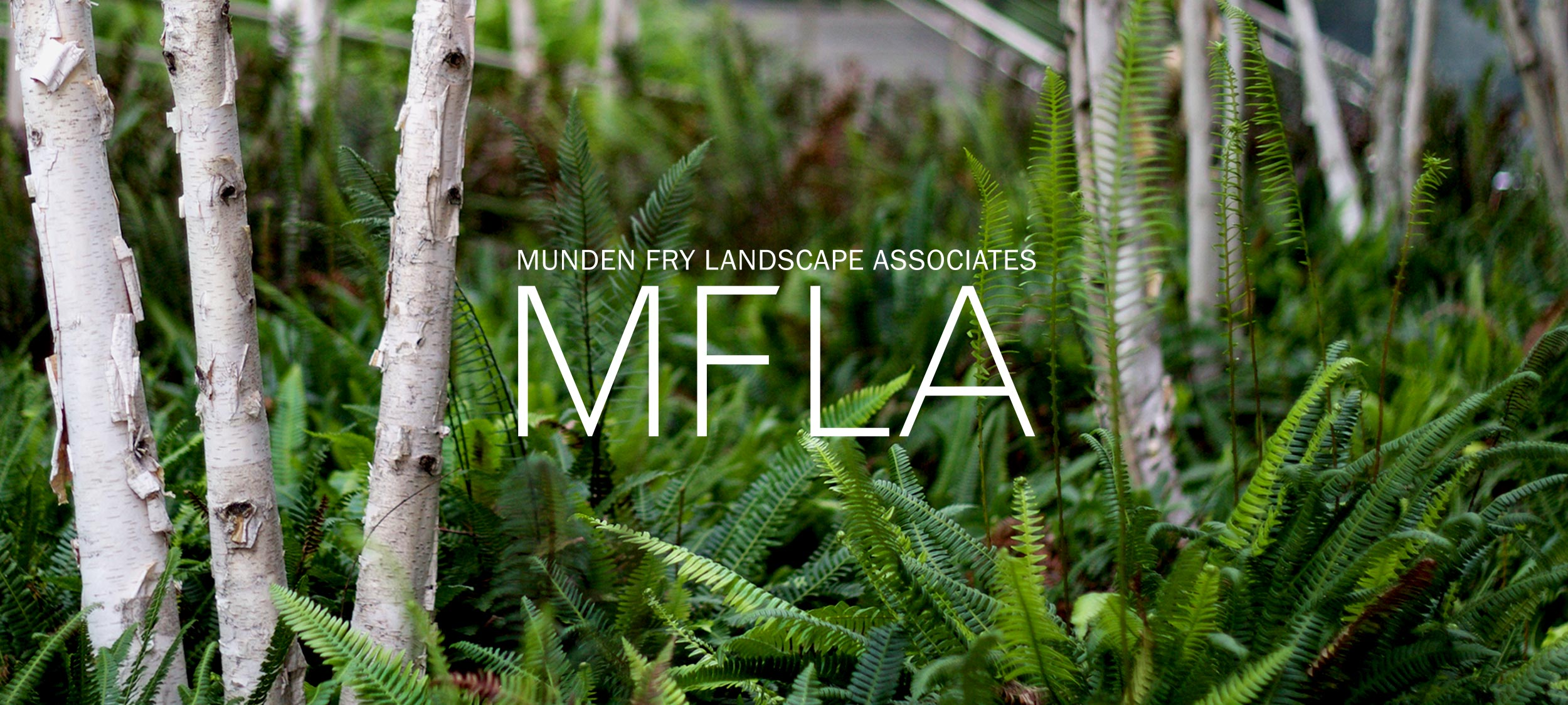 MFLA-Home-Gallery-10.jpg