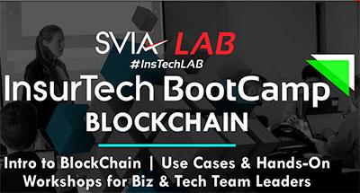 svia-bootcamp.jpg