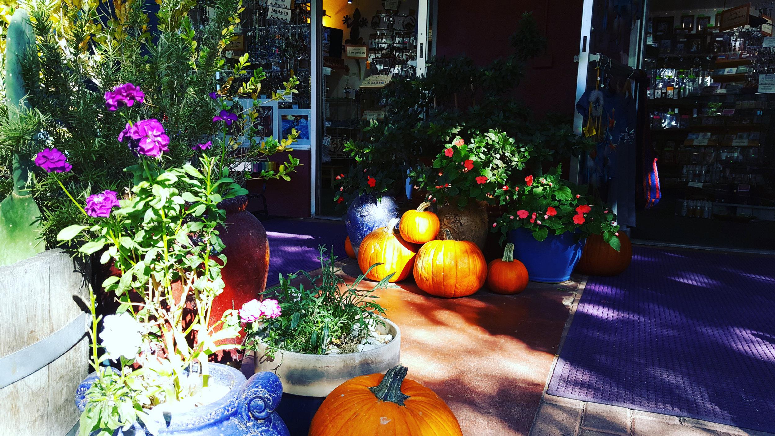 Pumpkins_Sedona_Oct_10_17.jpg