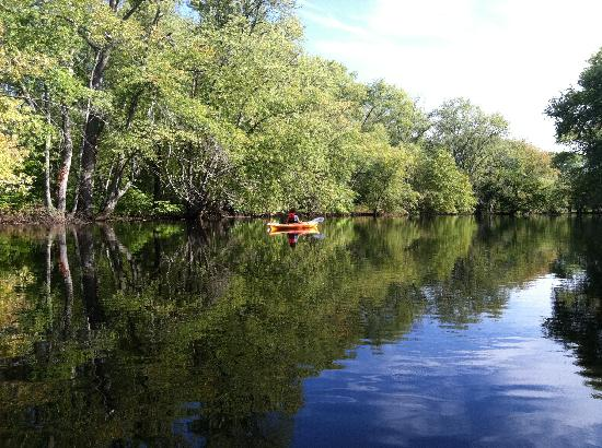 Concord River Kayaking to Minute Man National Park