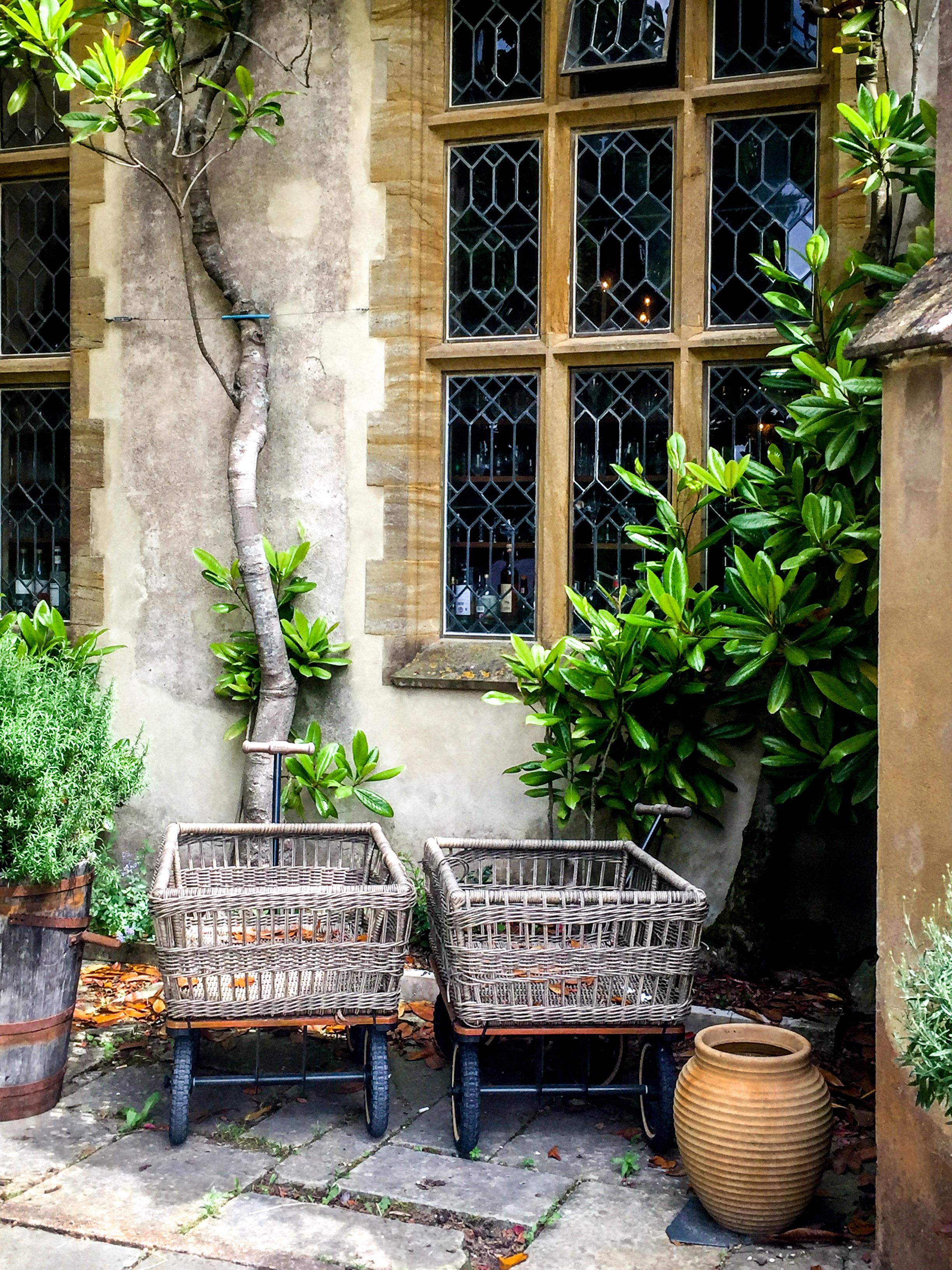 Pig_at_Combe_Gardening_Carts_Weston_Table.jpg