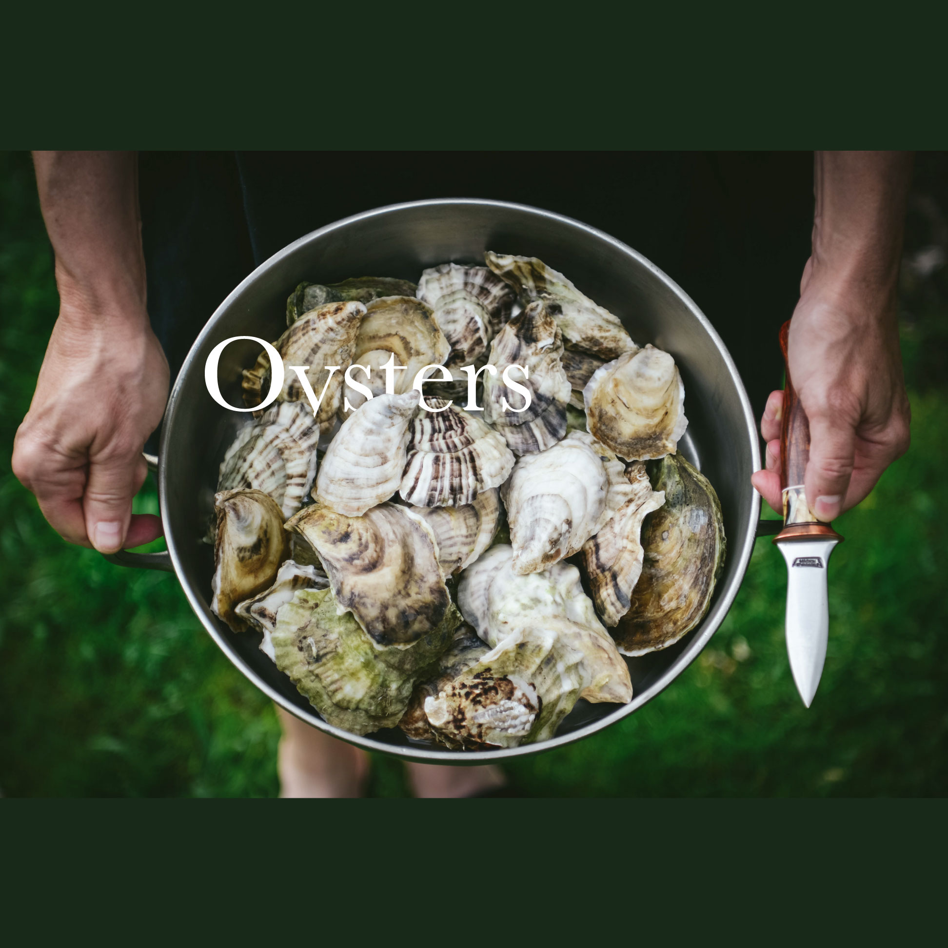 Oysters_Feature_Banner_6_Weston_Table.jpg