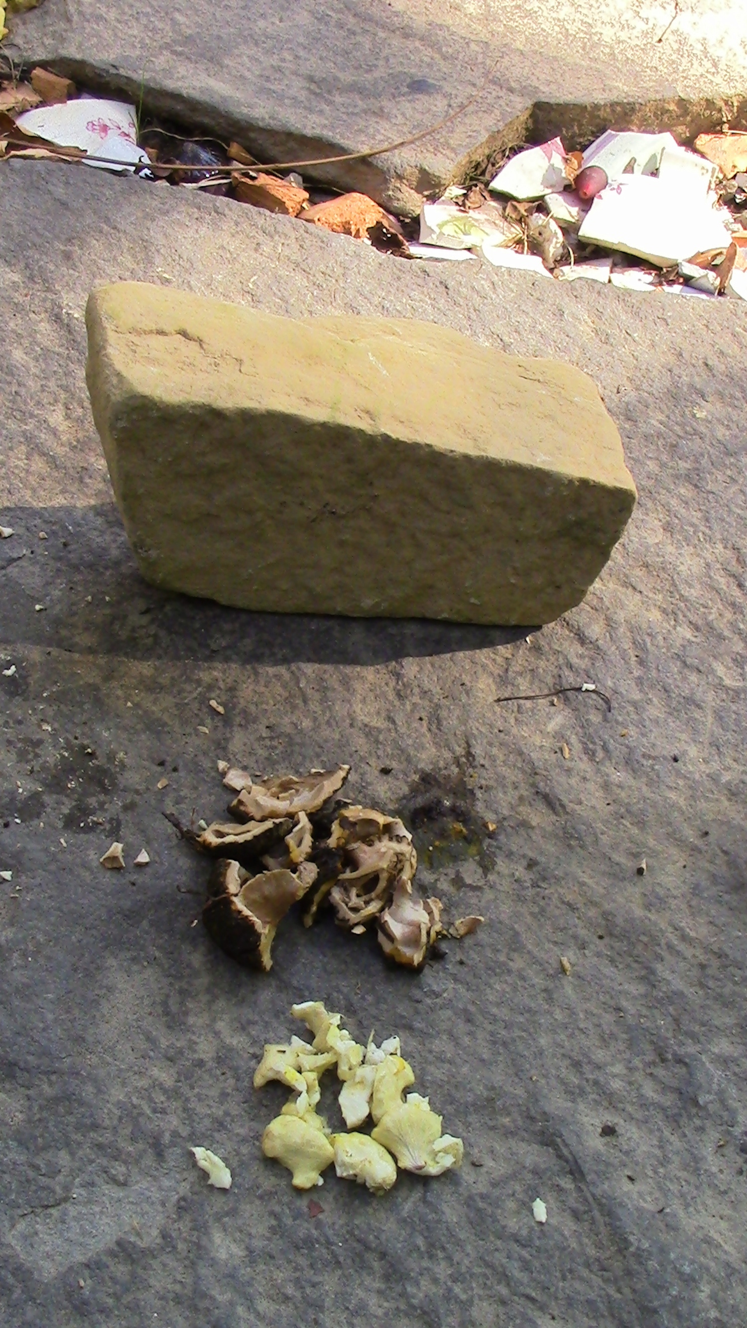 Stone for cracking; nut shell remnants (to compost); and nut meat to eat.