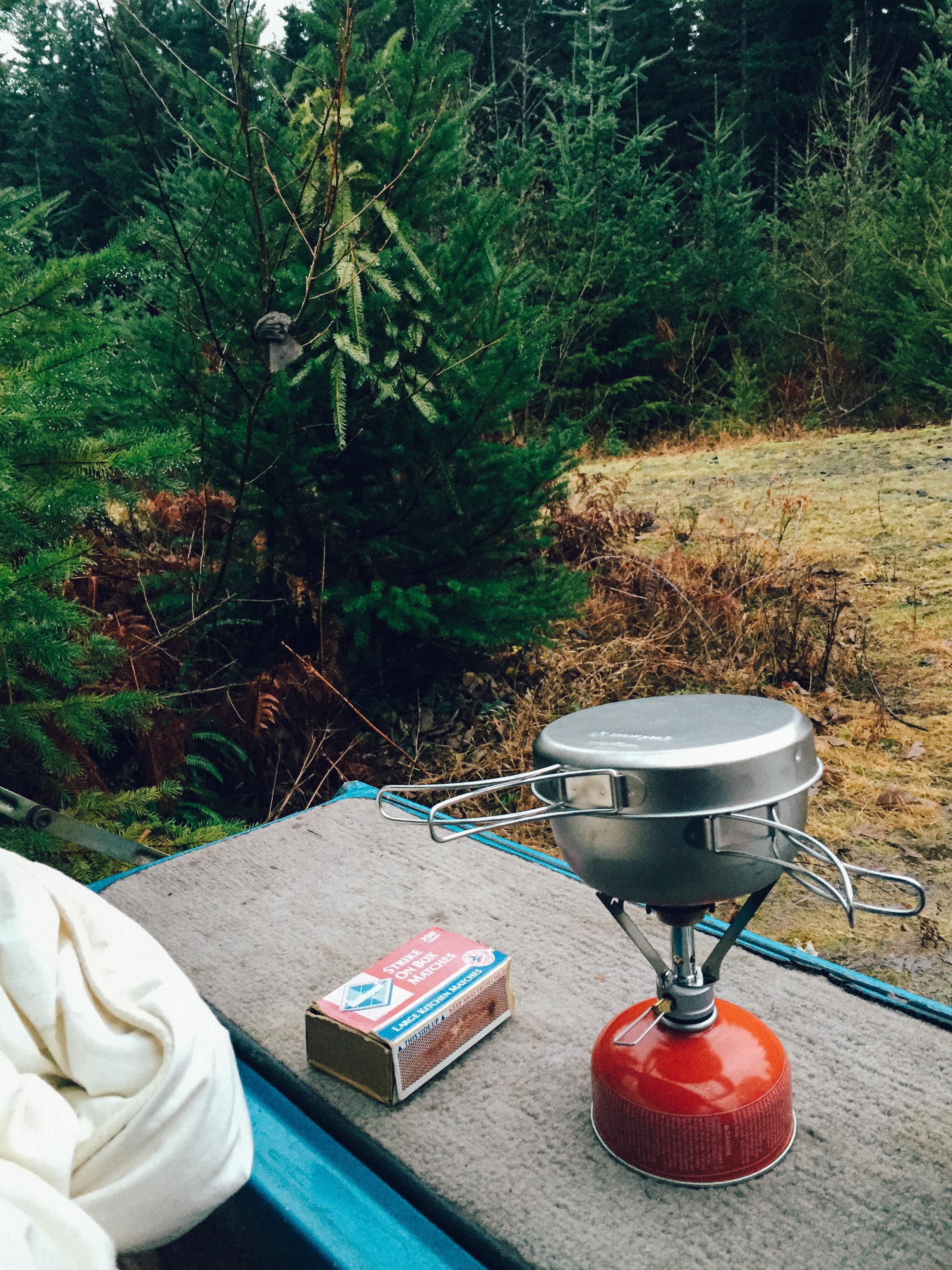 Camp Thief eyes breakfast.