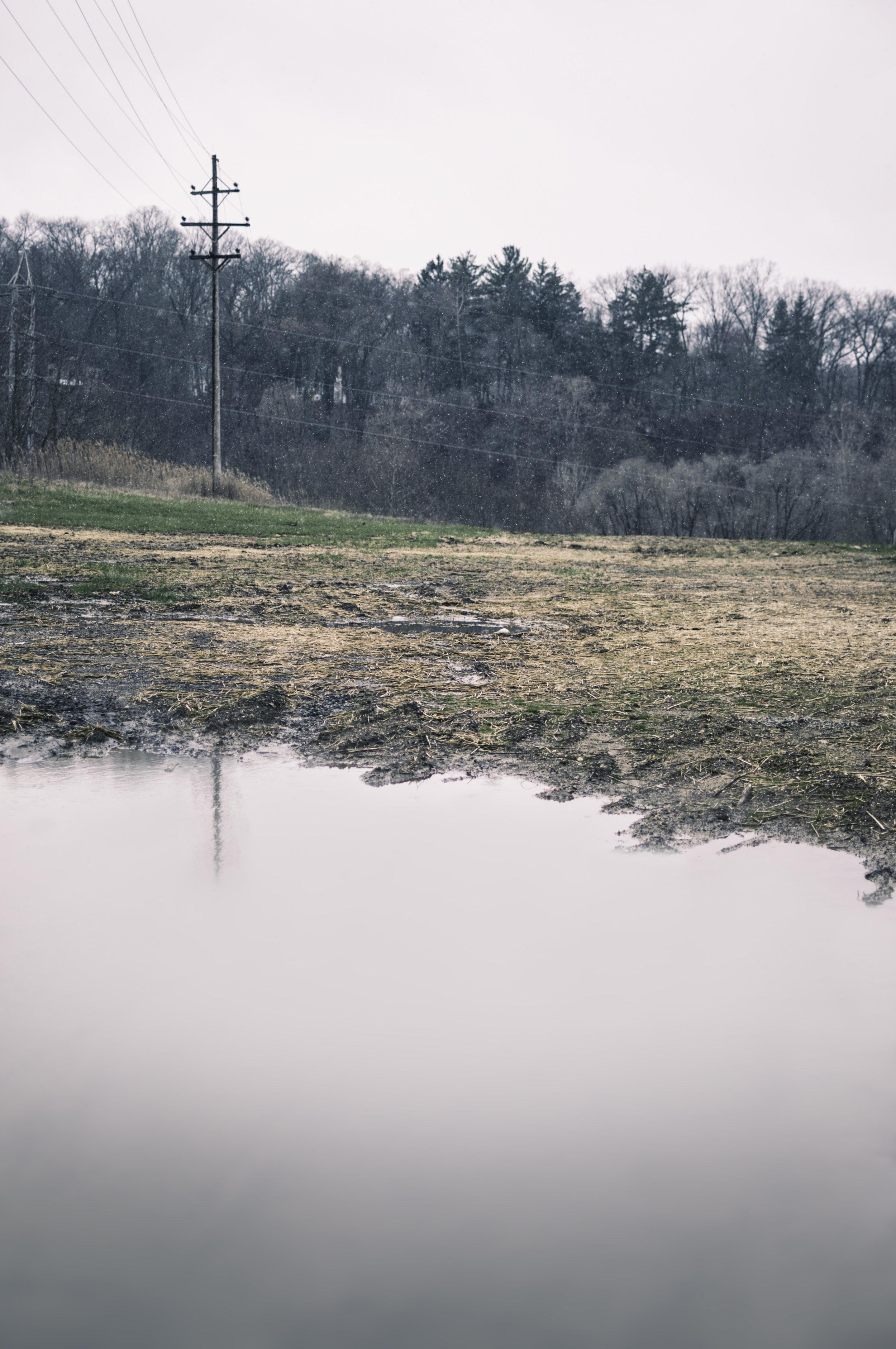 Landscape_Field001.jpg