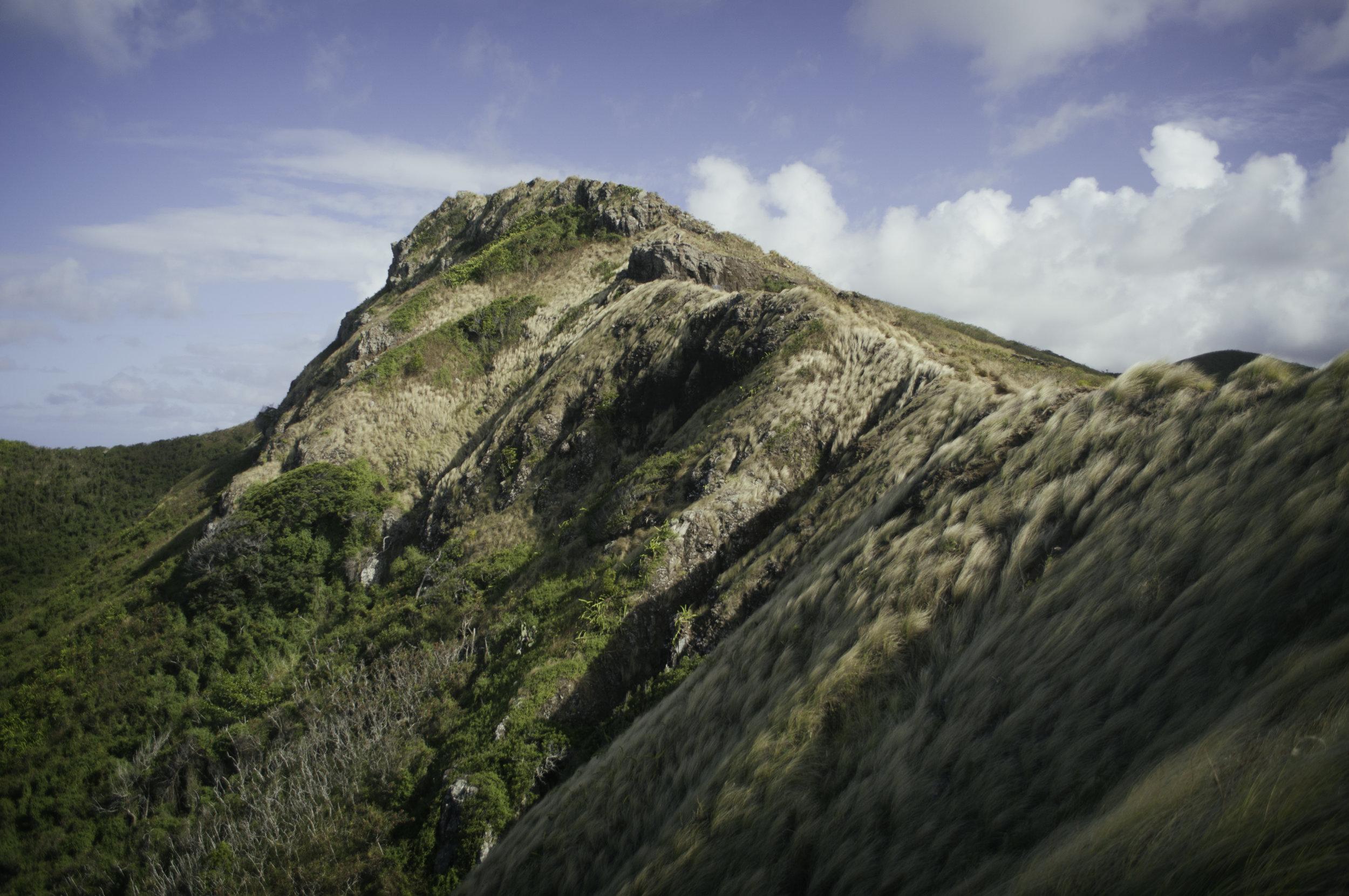 Landscape_HI001.jpg