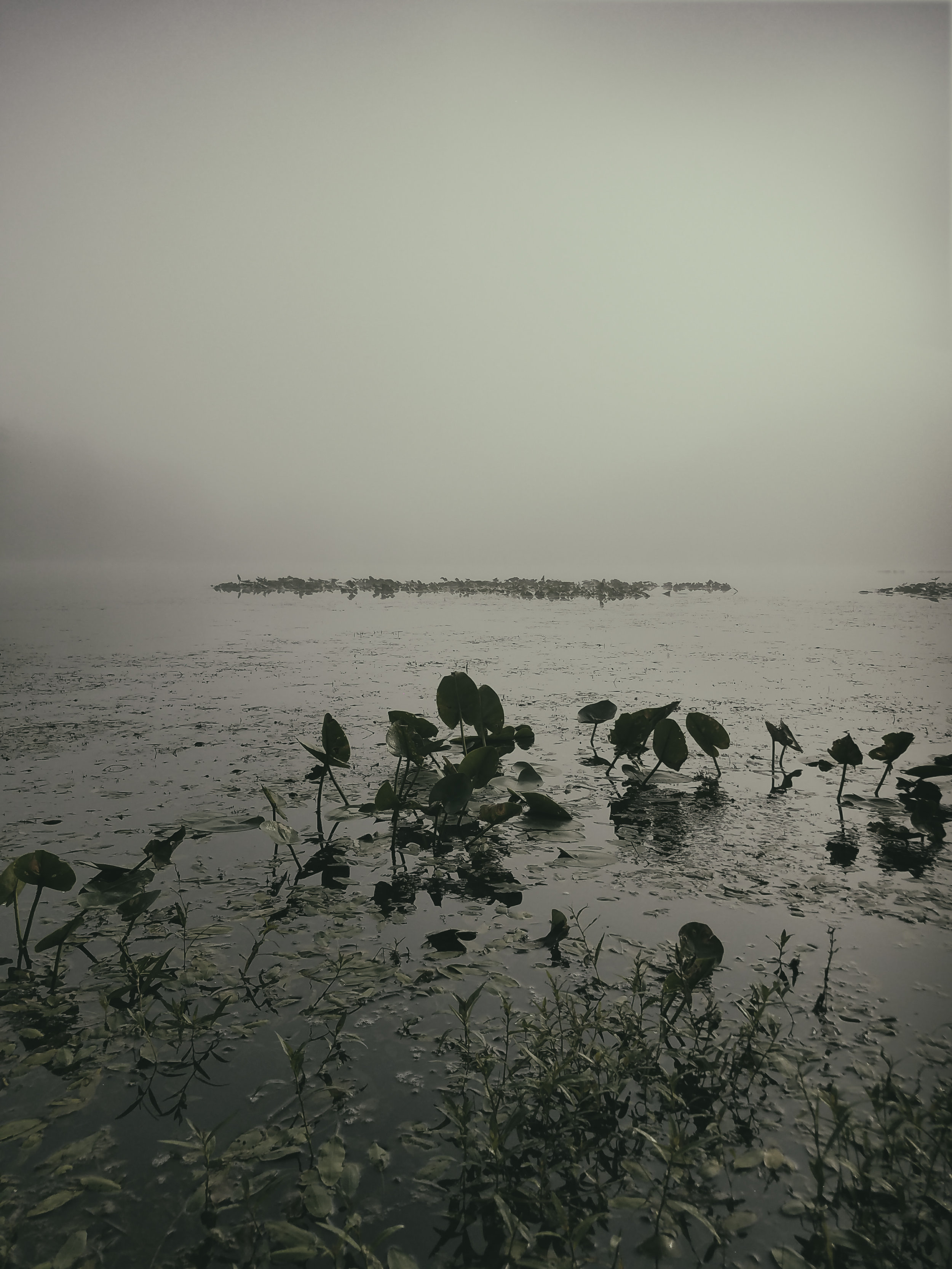 Landscape_Lake002.jpg