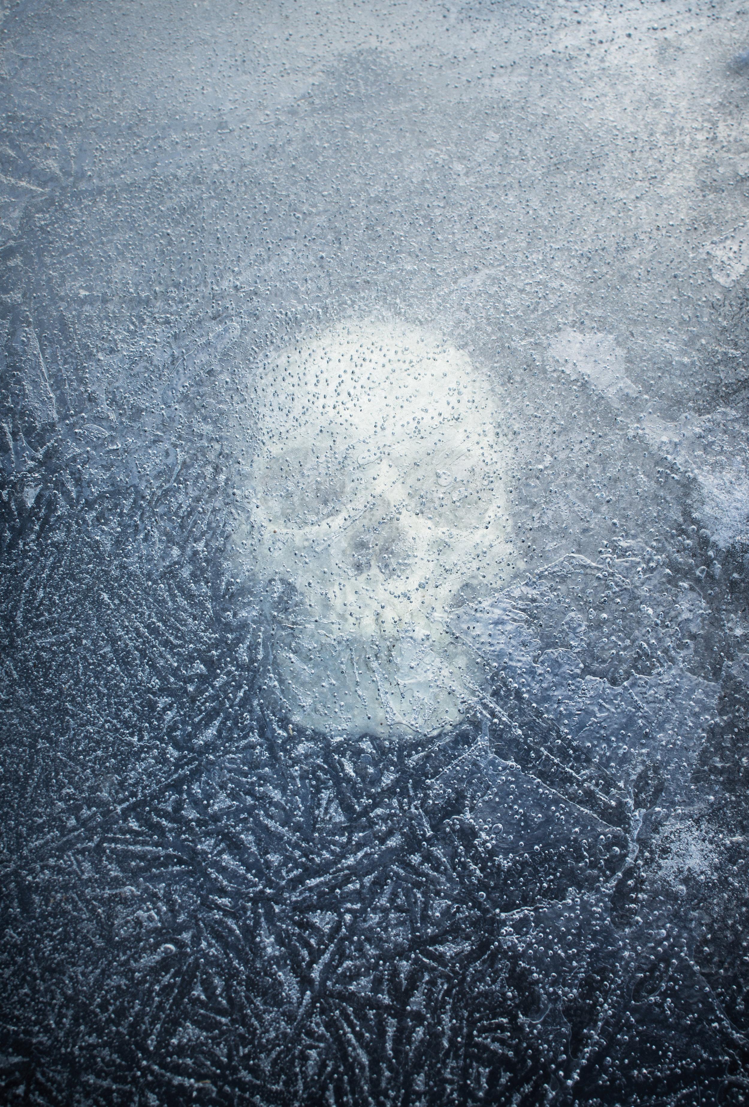 Skull_ice001.jpg