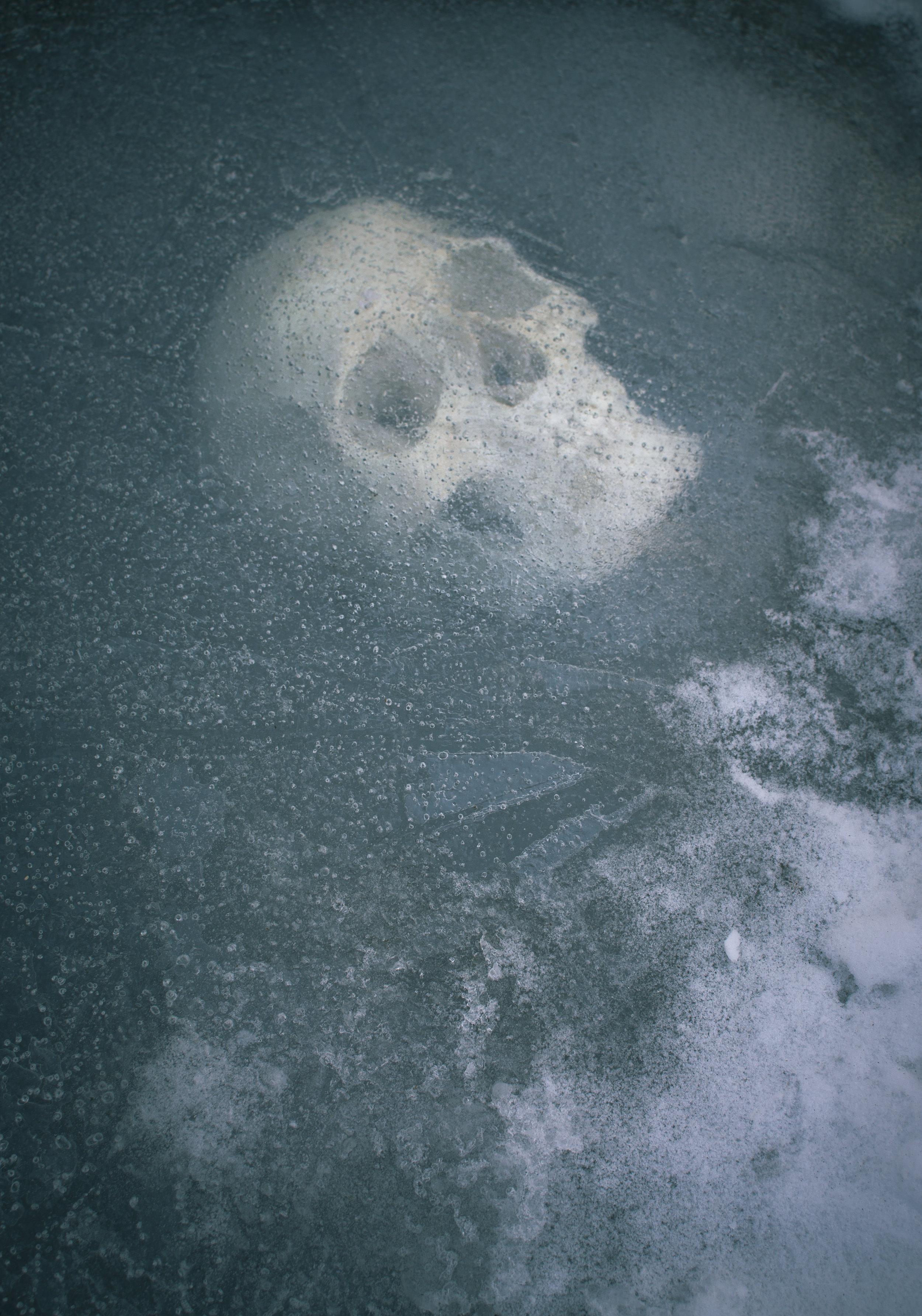 Skull_ice003.jpg