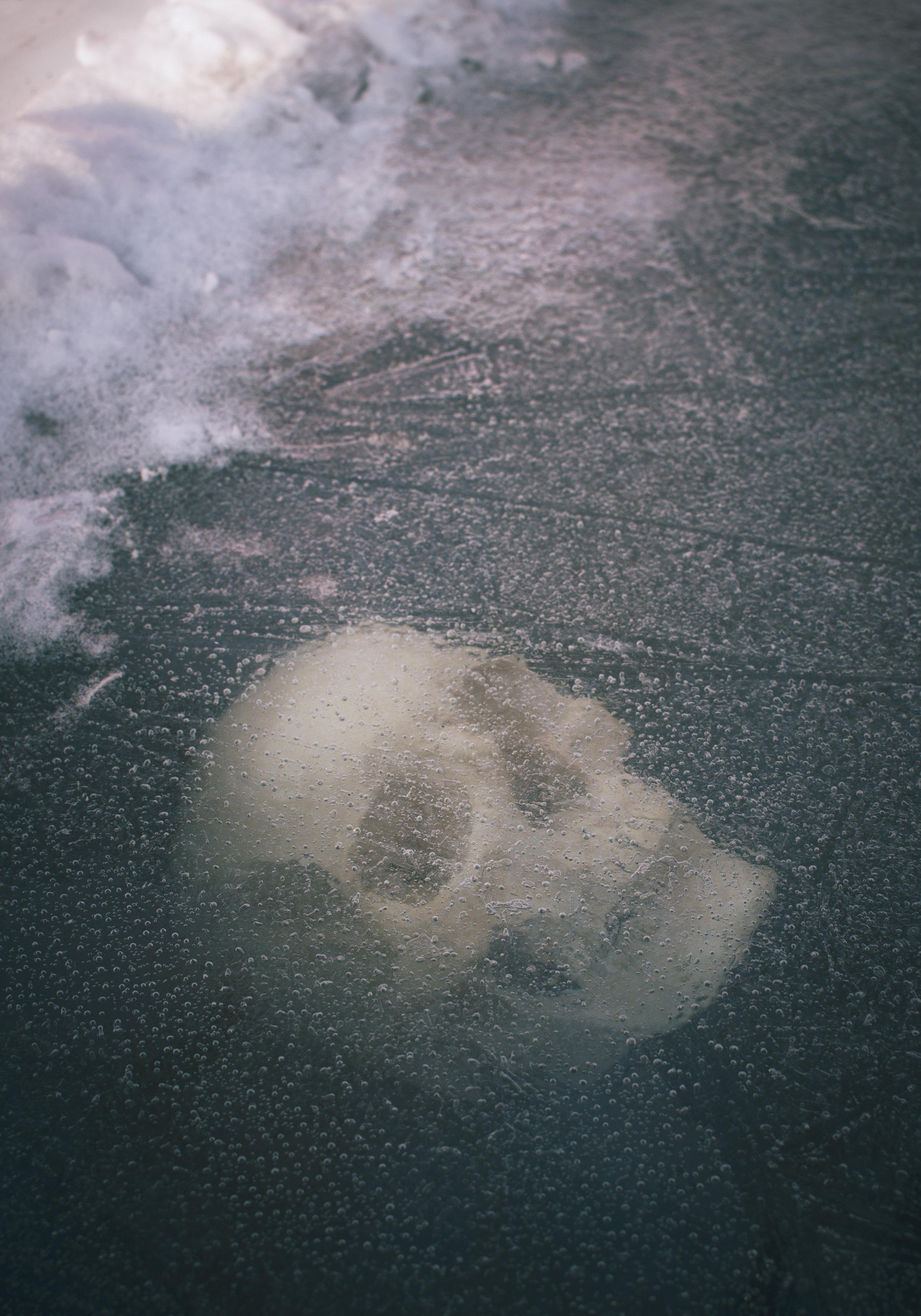 Skull_ice004.jpg