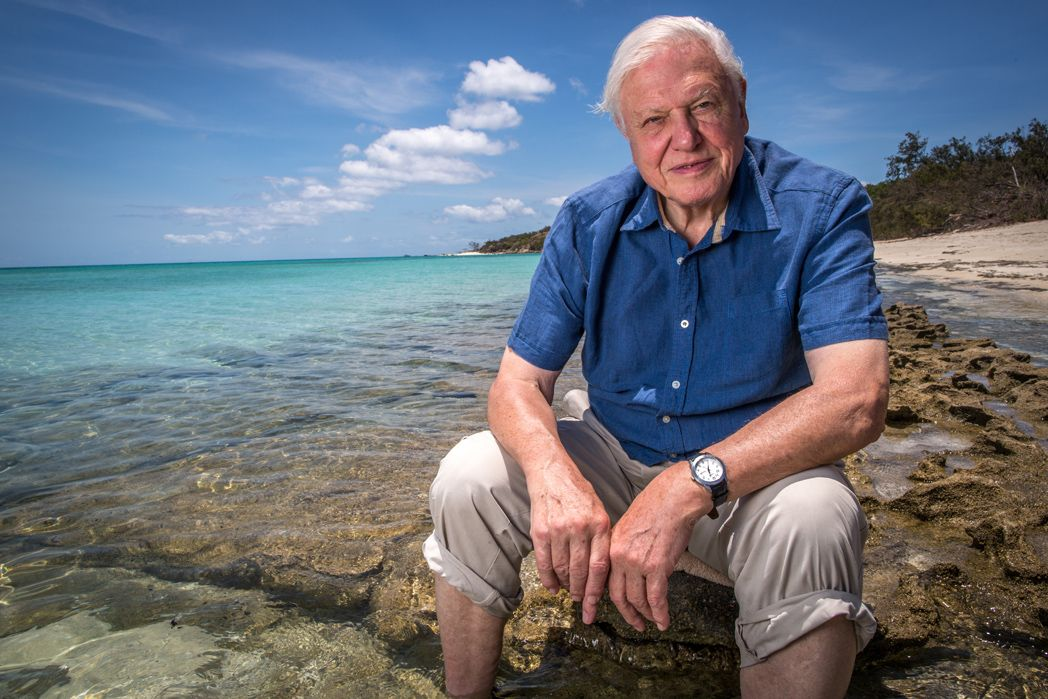 great-barrier-reef-with-david-attenborough-image-1.jpg