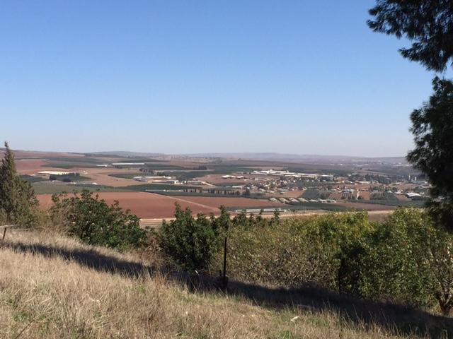 Nabot's Field