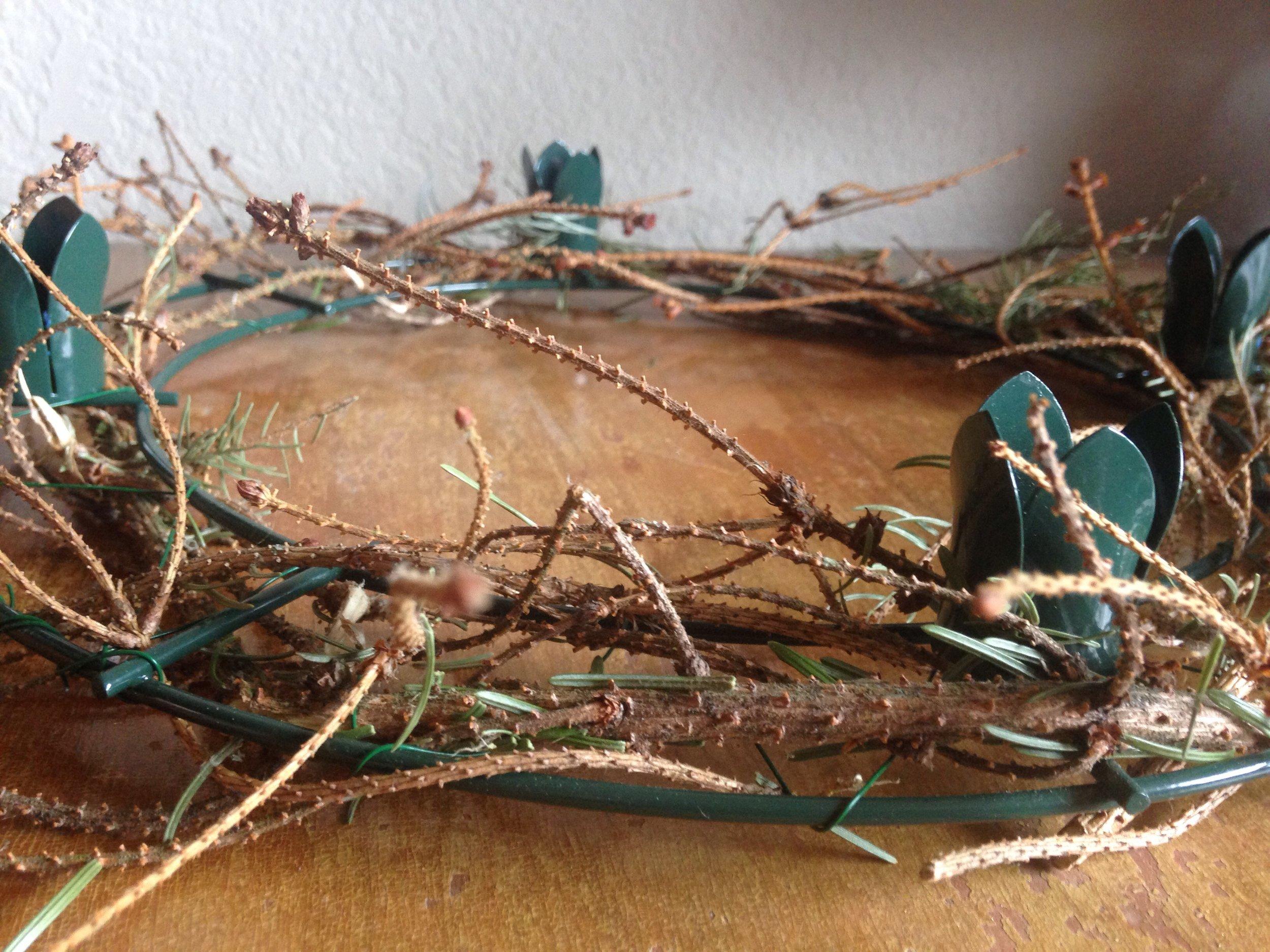 Lent Wreath - Sarah Yates.jpg