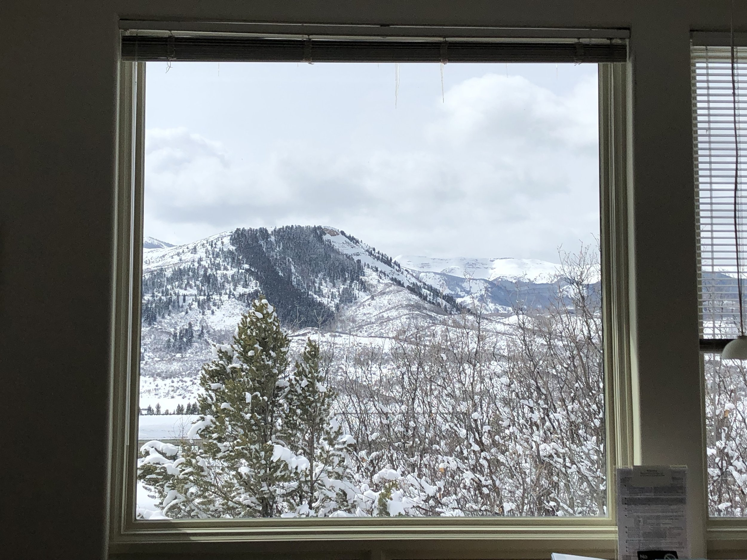 The view from my hermitage window