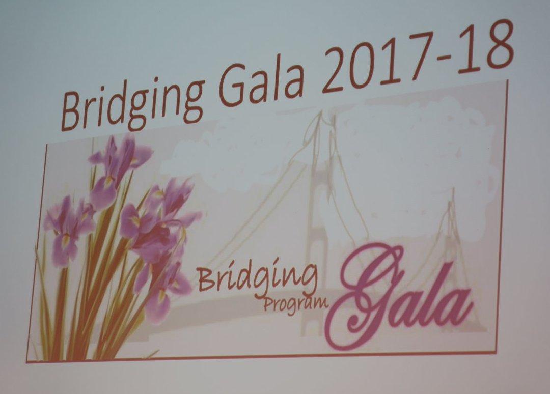 Bridging gala.jpg