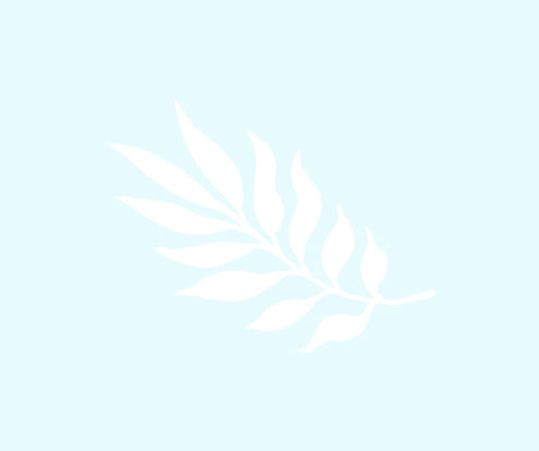 leaf-white-on-blue.jpg
