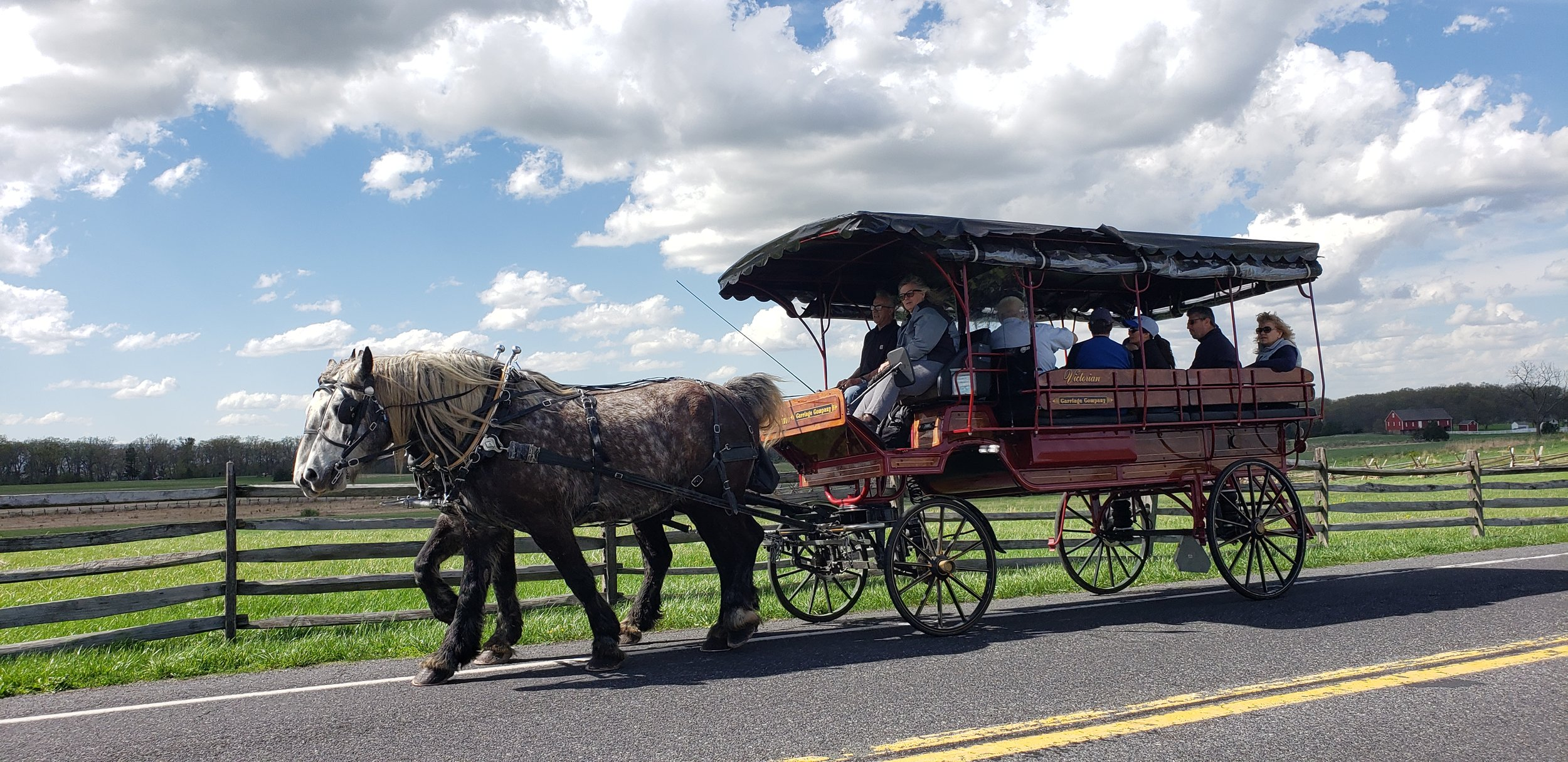 A carriage can hold you and your entire extended family. What a wonderful way to create a memory!
