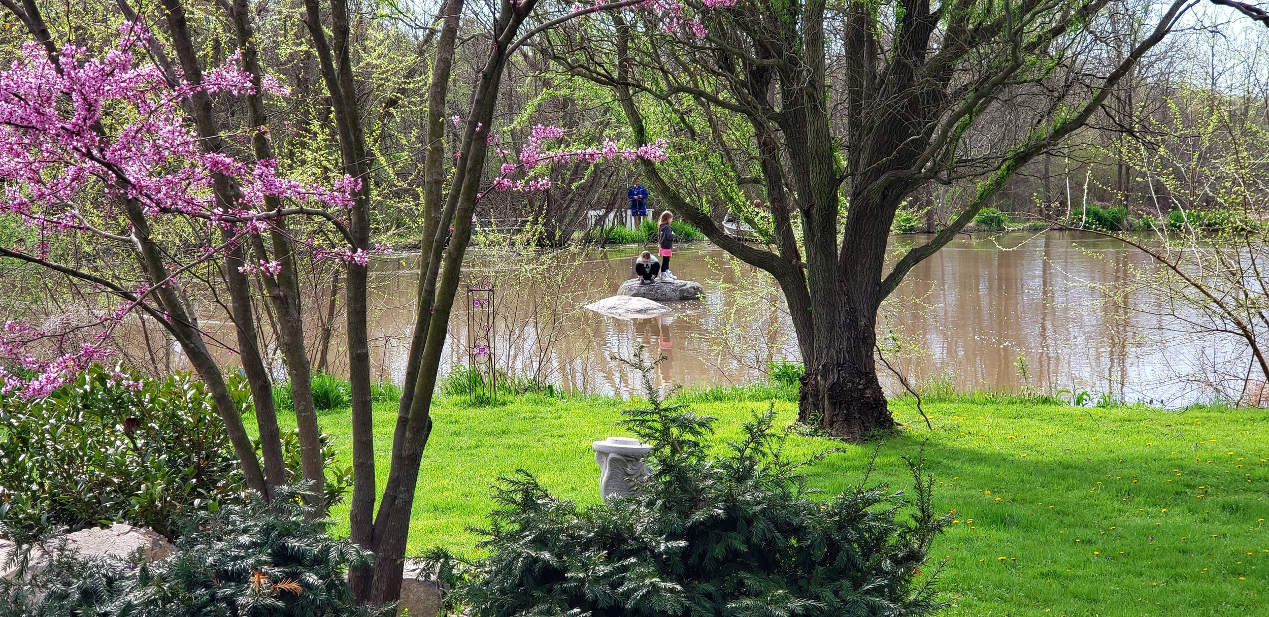 Spring on the pond.jpg