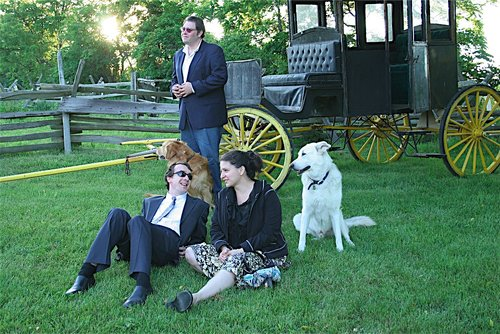 Dogs attend a wedding at the B&B.