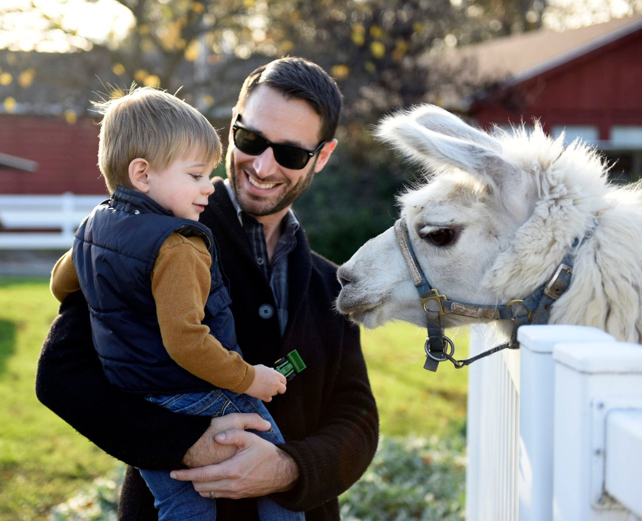 Four-legged creatures abound at the Land of Little Horses. Photo: RoadToGettysburg.com