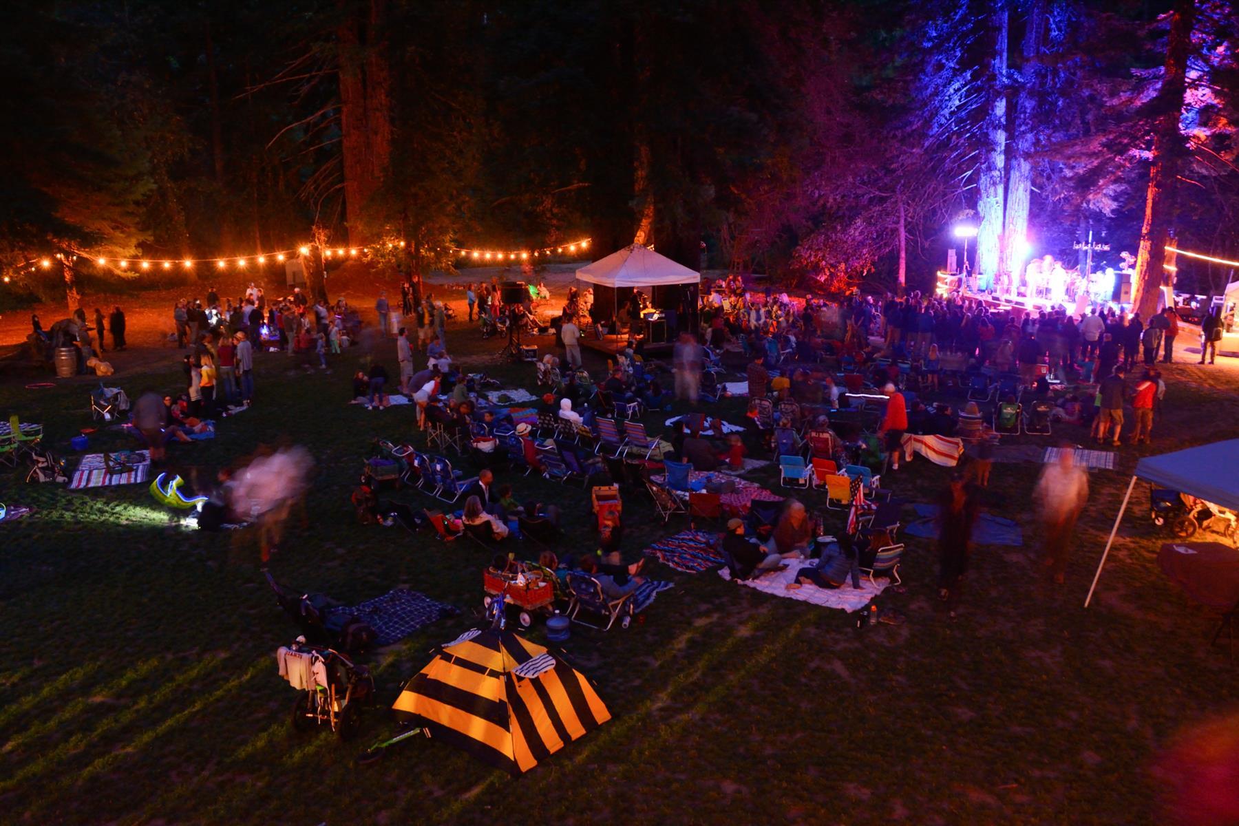 Camp Fest Night Shot.jpg