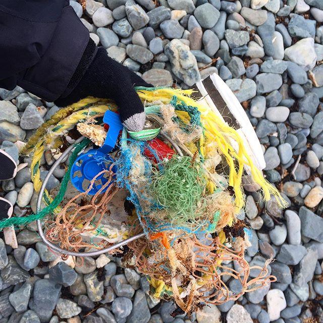 #5minutebeachcleanup in Bonavista, Newfoundland Canada