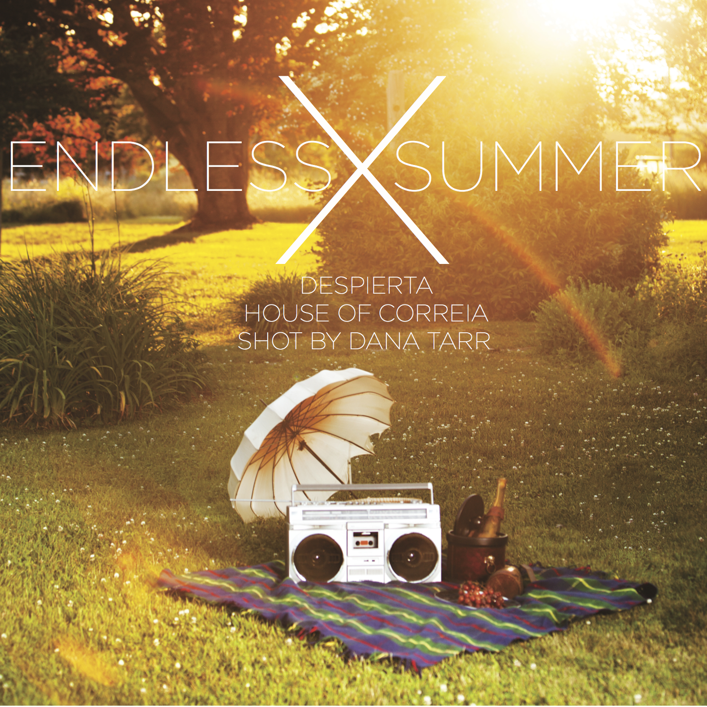 endless summer credits.jpeg