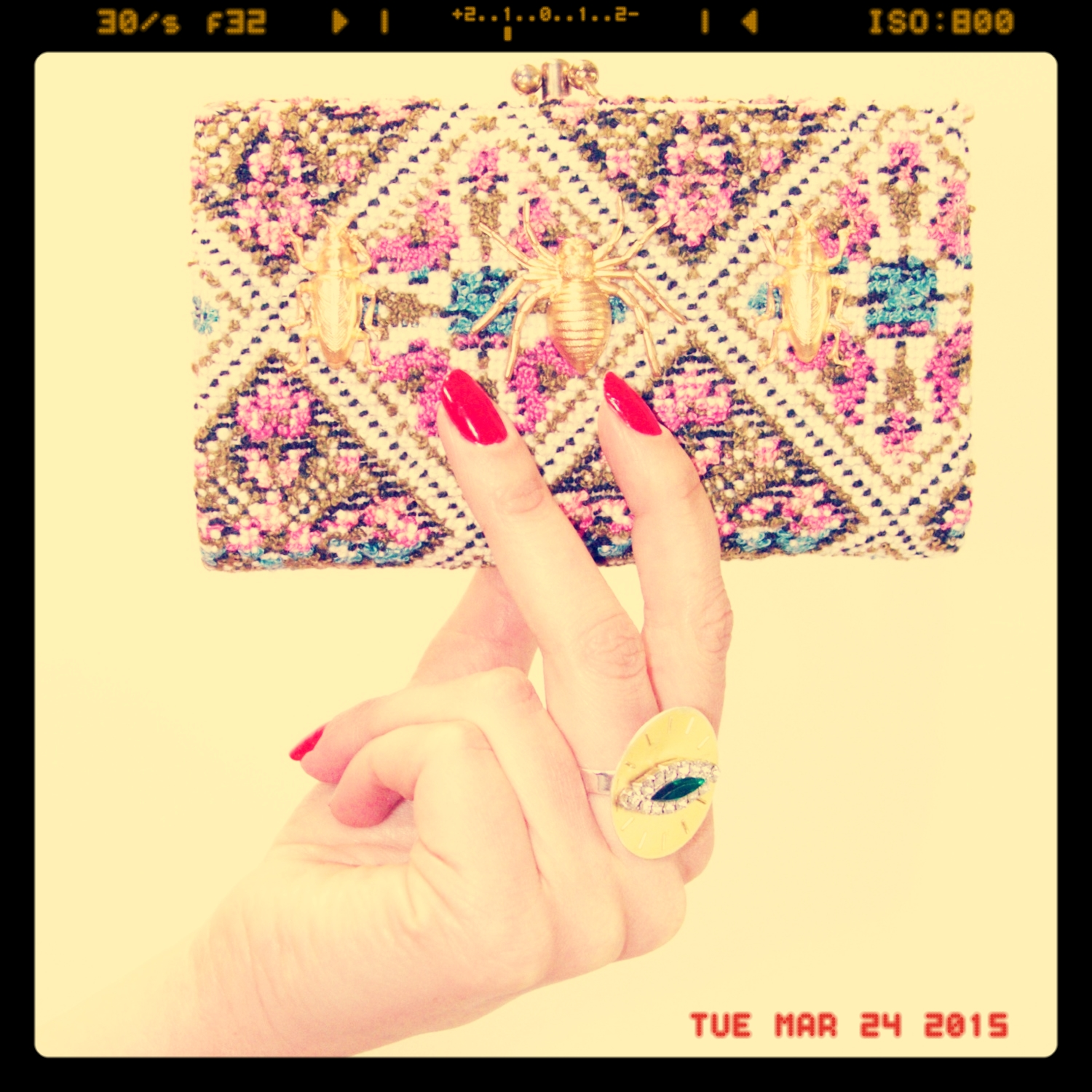The Lady Bugged Wallet   $25