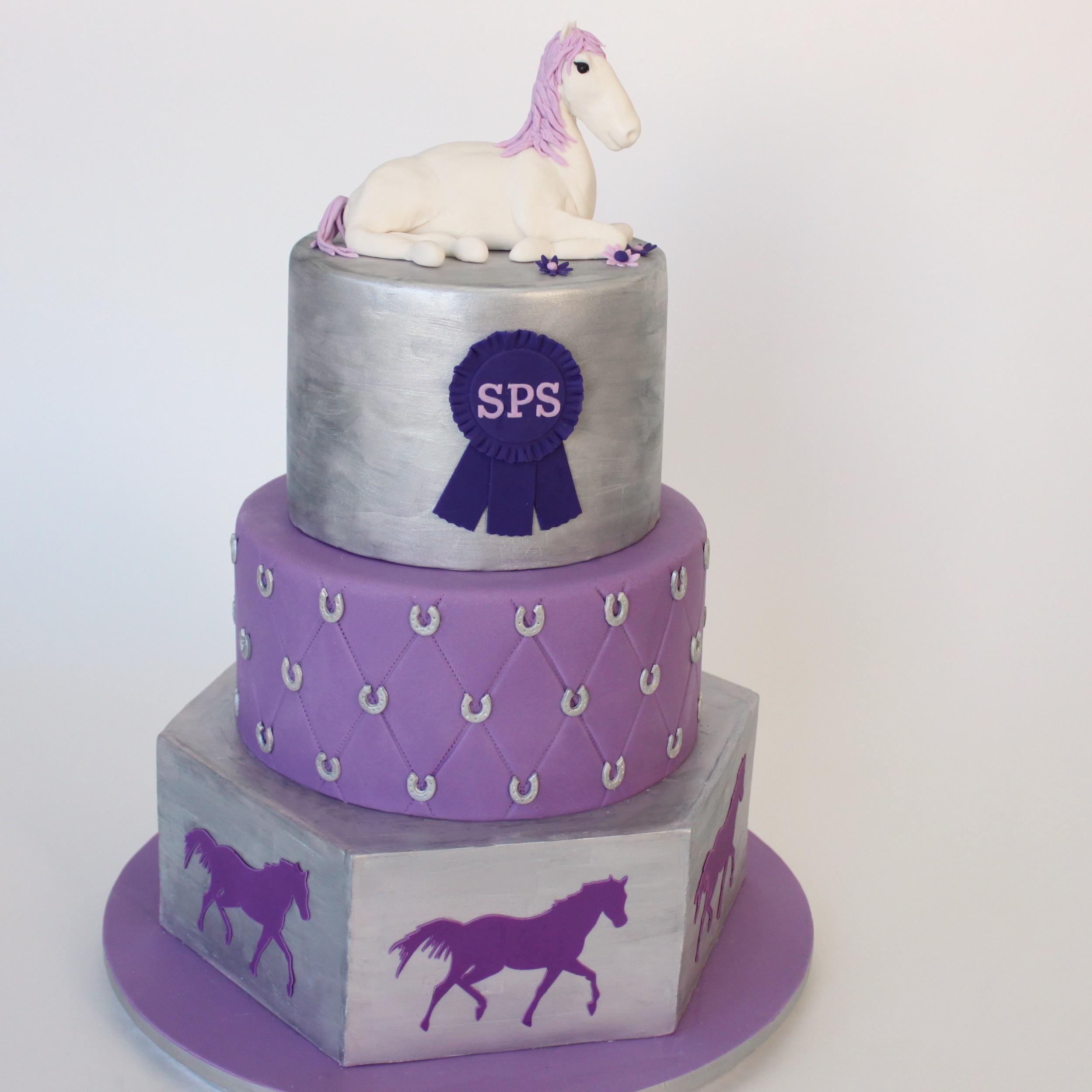 Horse Bat Mitzvah cake 417.jpg