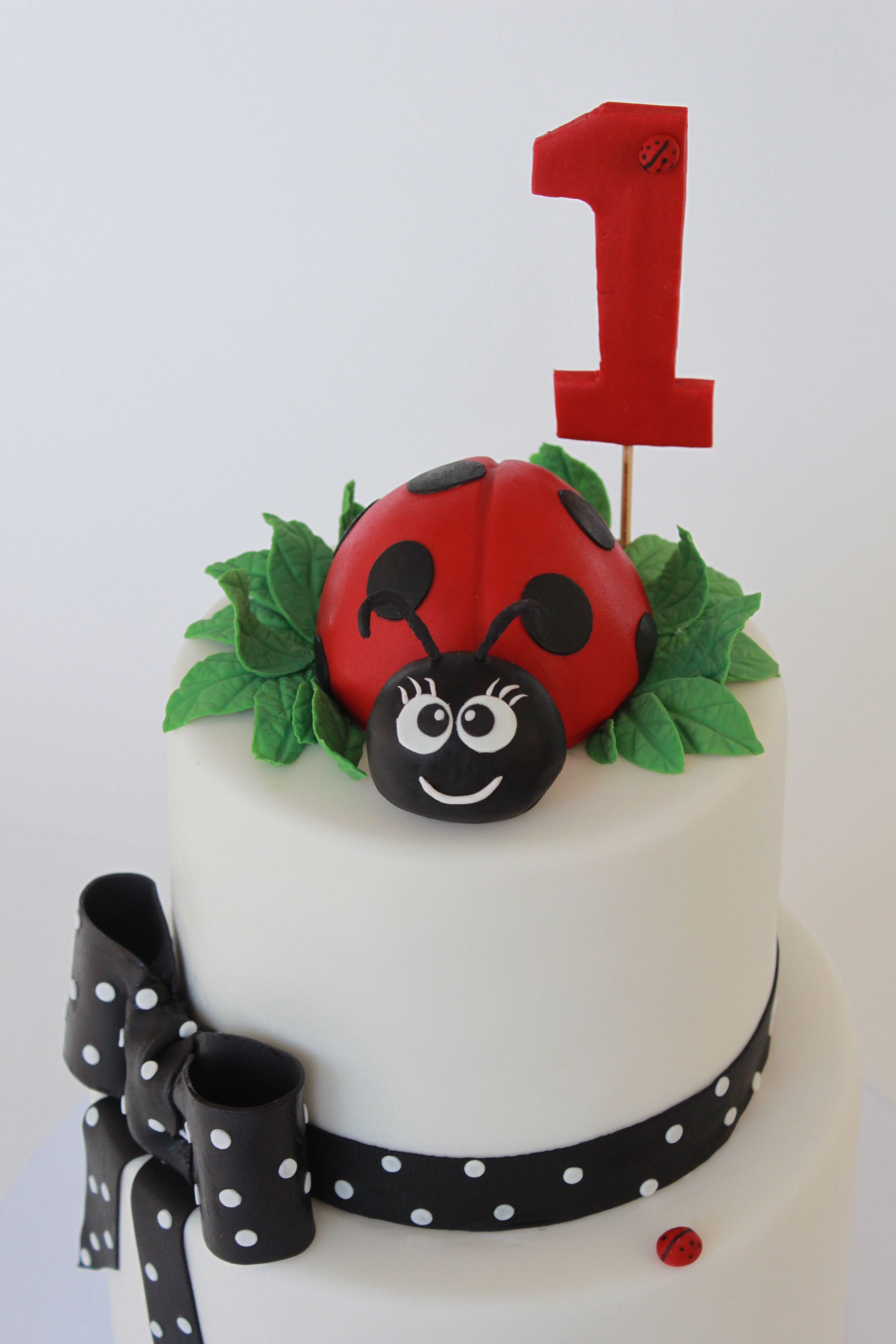 ladybug close 132.jpg